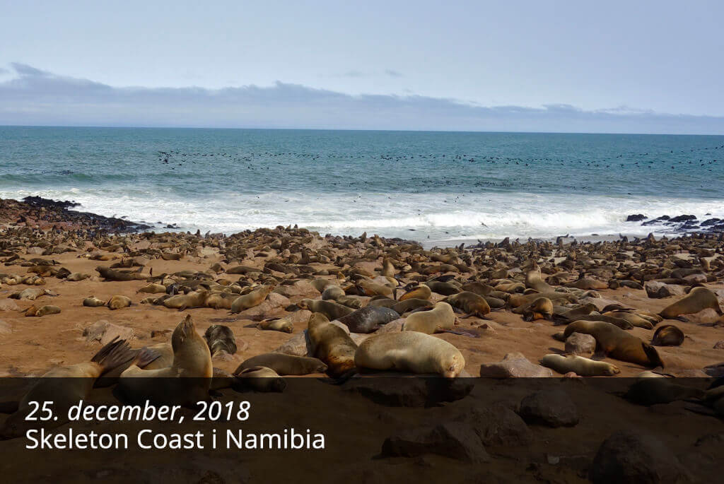 Blog - Skeleton Coast i Namibia
