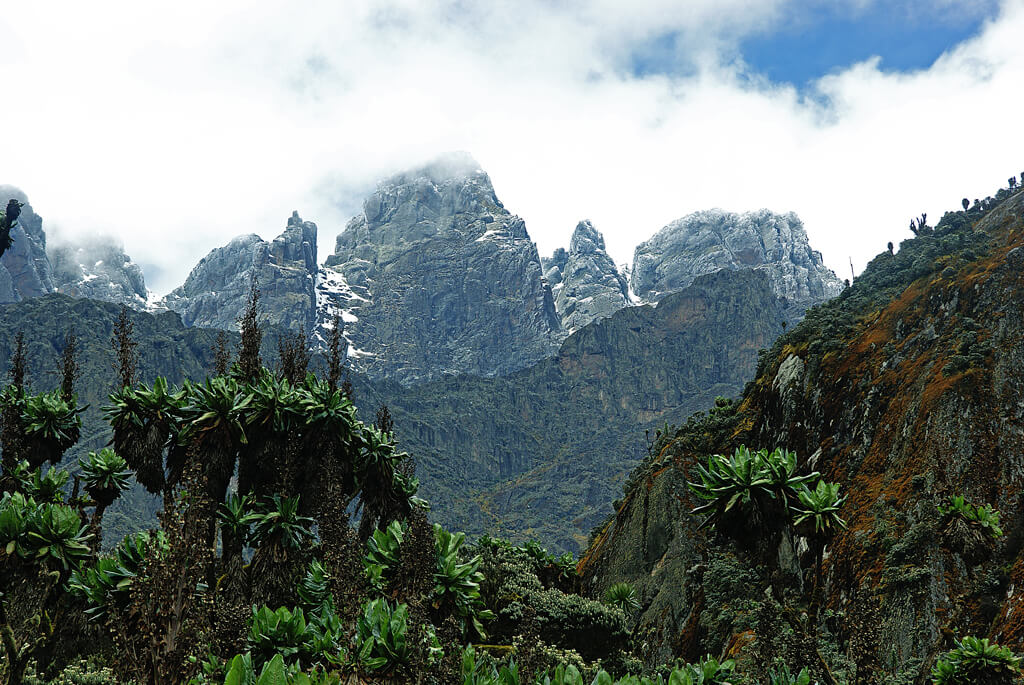 Rwenzori Mountains-uganda