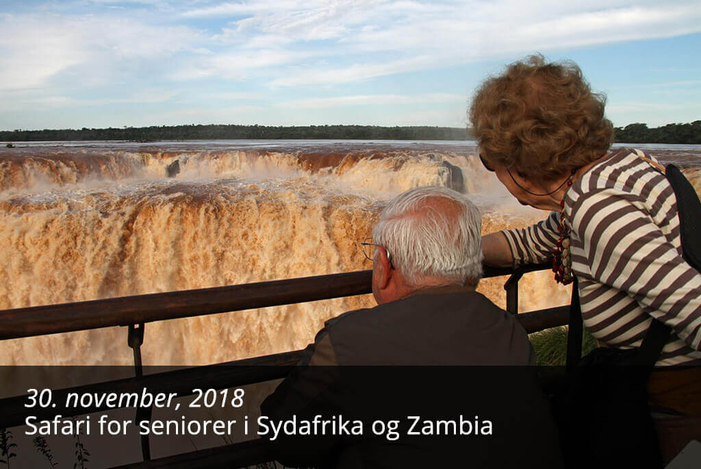 Safari for seniorer i Sydafrika og Zambia