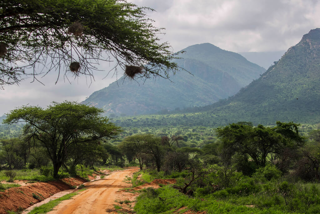 tsavo-national-park-west-