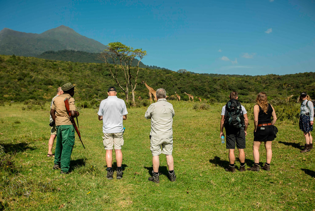 walking safari, Kilimanjaro, Arusha national park